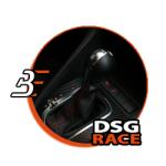 "DSG DQ250 Abstimmung Stufe 3 ""Race"""